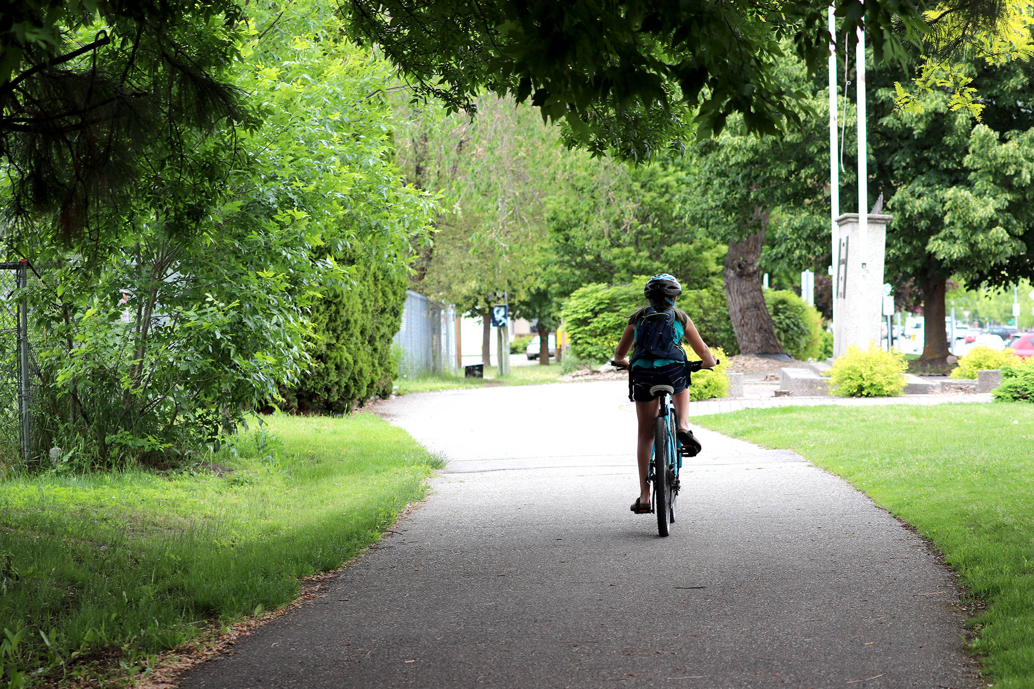 Linear Park's wide, paved walkway is used by many, including bicyclists, dogs, walkers and runners. (Morning Star file photo)